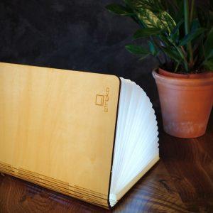 Maple LED Smart Book Light
