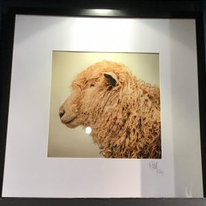 Glass Framed 'Twiggy' Signed Photographic Print