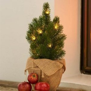 Tia Green LED Lit Christmas Tree 35cm