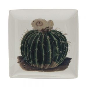 Botanical Large Trinket Tray - Cactus