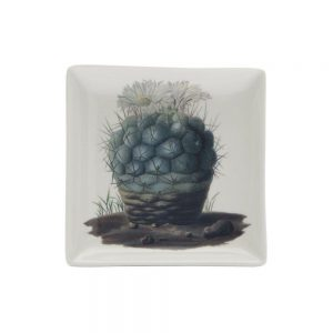 Cubic Botanical Cactus Fine China Trinket Tray Small