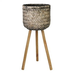 Standing Reed Pot with Grey Border Trim
