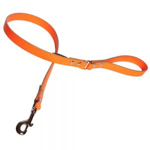 Neon Dog Lead Orange