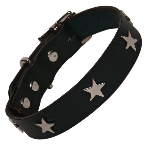 Leather Black Dog Collar (Neck Size 25 to 35cm)