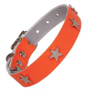 Leather Neon Dog Collar Orange (neck size 40 - 51cm).