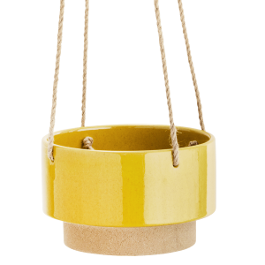 Hanging Yellow Top Flower Pot