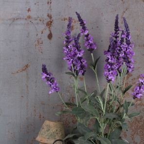 Faux Purple Veronica Potted Plant