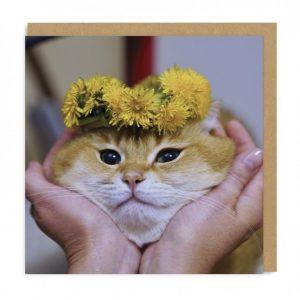 Greeting Card Cat Face
