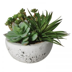 Faux Green Succulents with Bowl