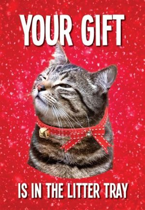 Litter Tray Christmas Card