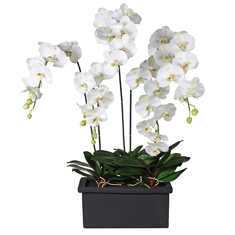 White Faux Orchid in Black Oblong Planter