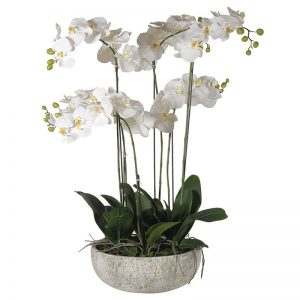 White Faux Orchid in Stone Effect Bowl