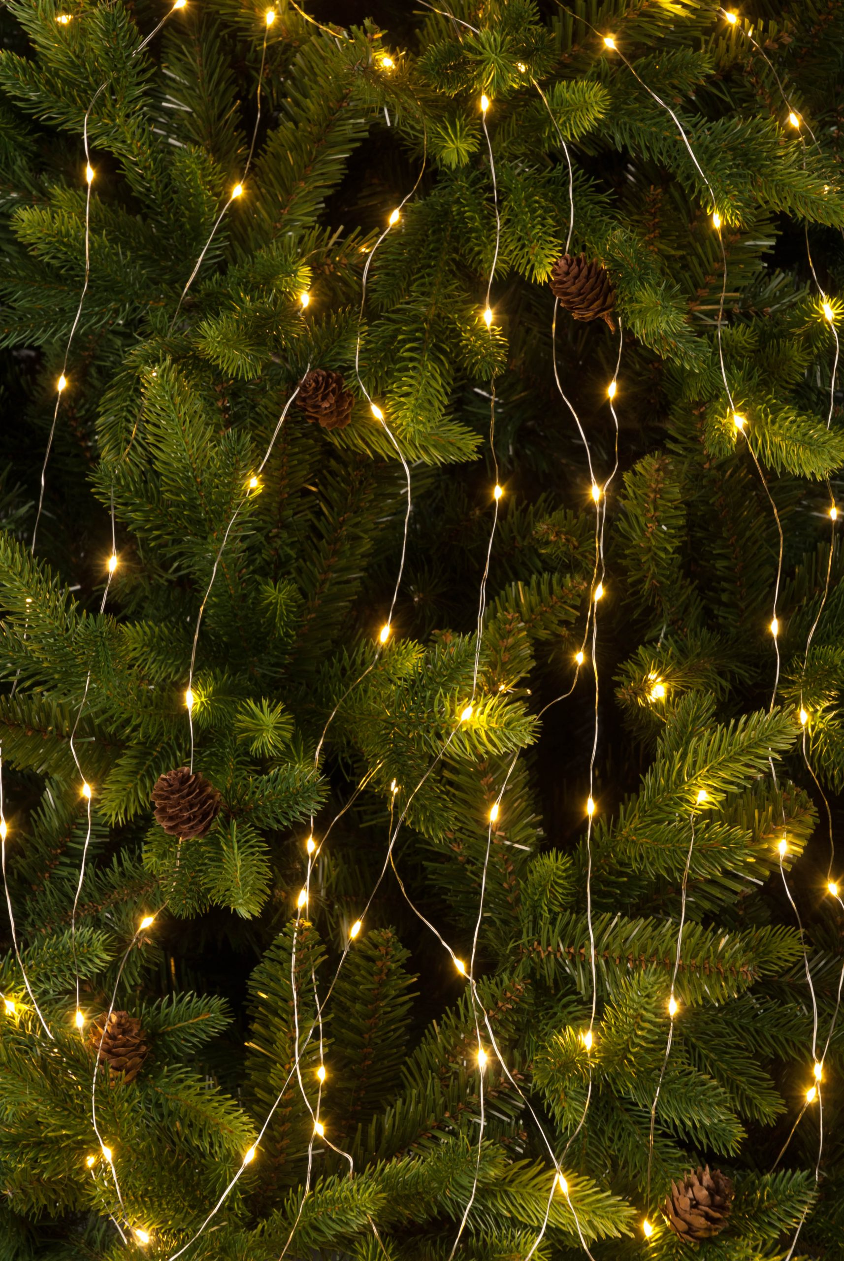 Christmas 100 Boxed Dew Drop Warm White LED Lights