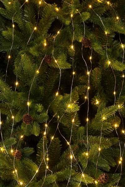 200 Warm White Dewdrop Branch LED Lights
