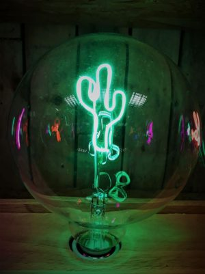LED Message In A Bulb - Cactus