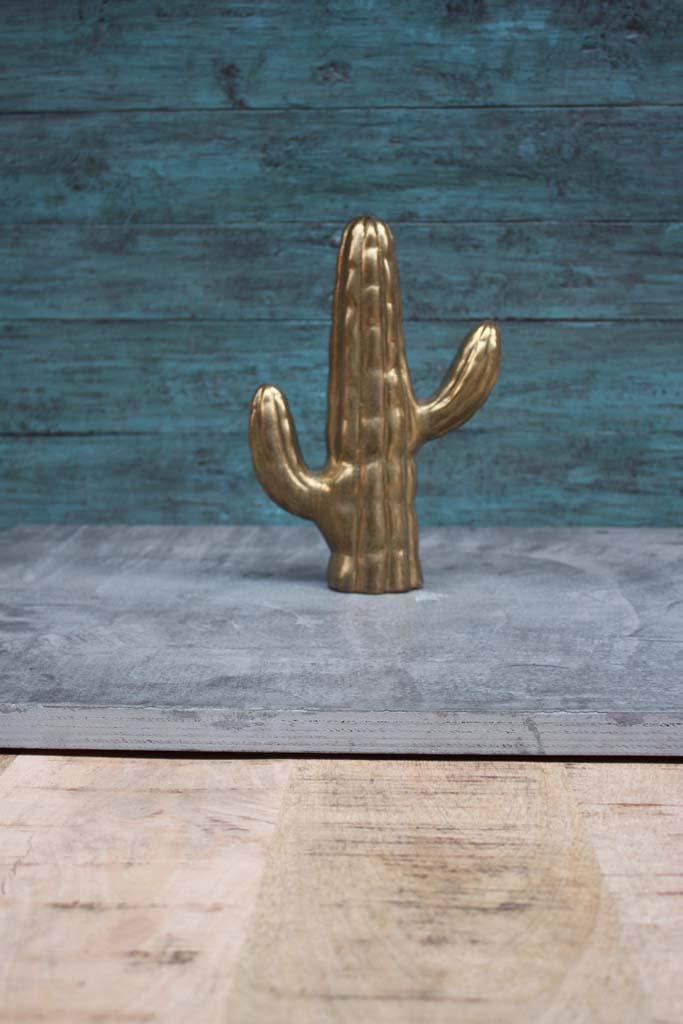 Gold Cactus