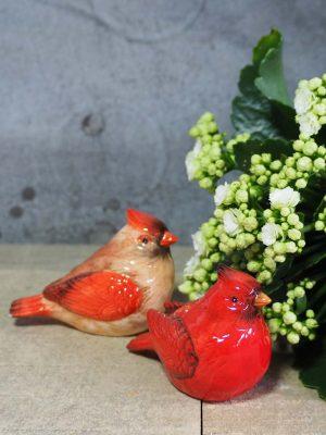 Salt & Pepper Red Birds