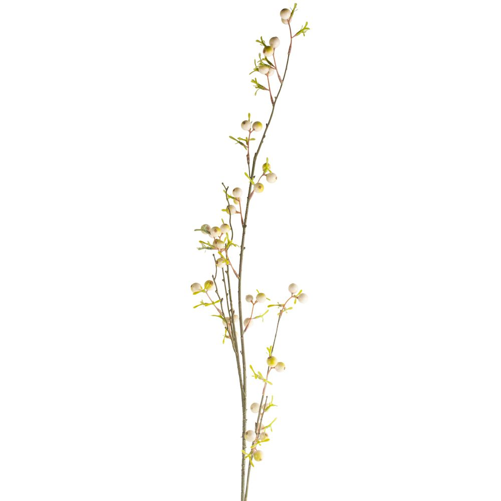 Berry Branch White
