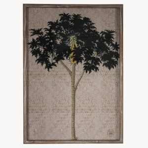 Framed Kew Gardens Tropical Print A