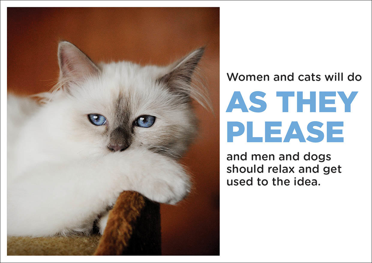 Greetings Card - Women and Cats