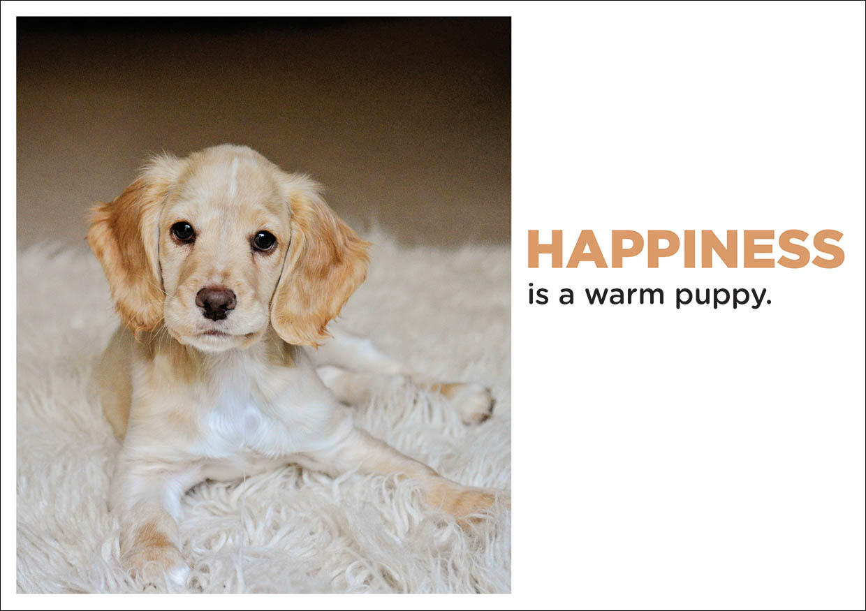Greetings Card-Happiness is a Warm Puppy