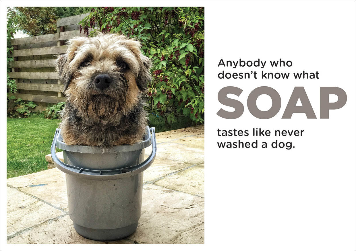 Greetings Card with Dog In Bucket