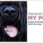 Birthday Card from the Dog
