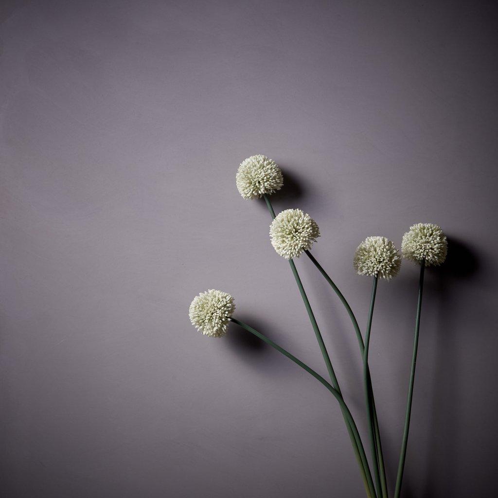White Faux Allium