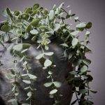 Faux Eucalyptus Trailing