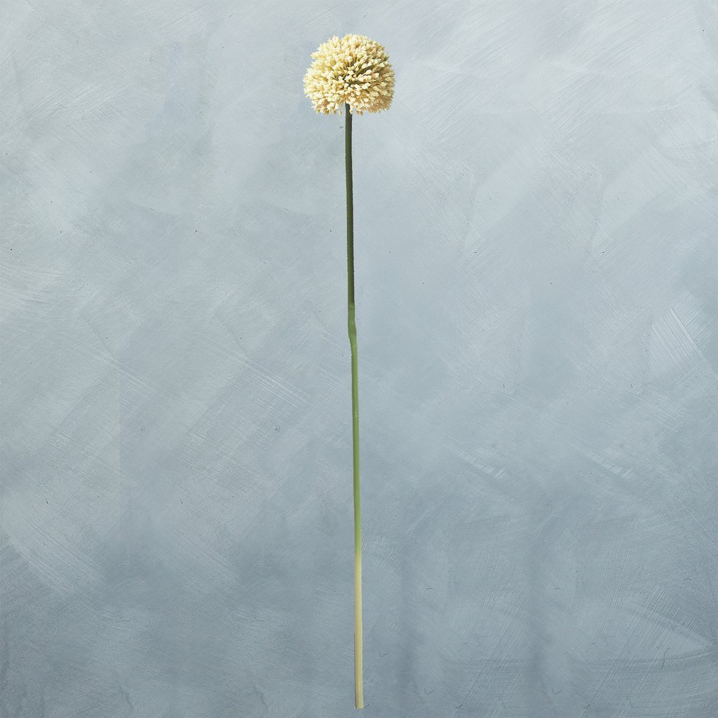 White Faux Allium