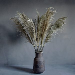Single Pampas Faux Stem