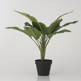 Faux Peace Lily in Pot