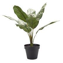 Faux Tree in Pot