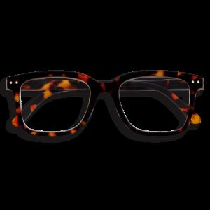 Izipizi #L Reading Glasses in Tortoise