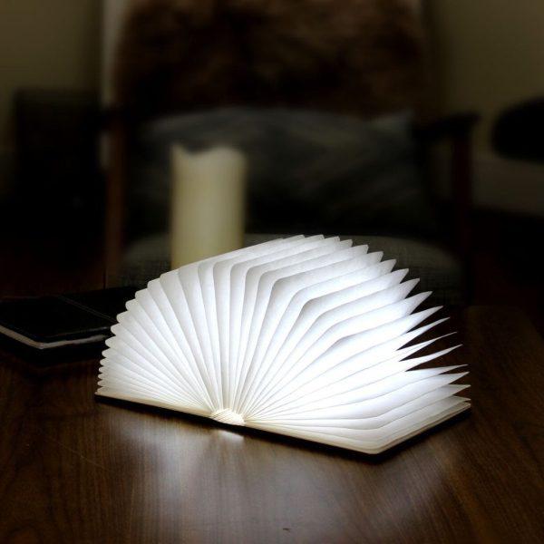 Maple Mini LED Smart Book Light