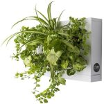 Ortisgreen Living Wall White
