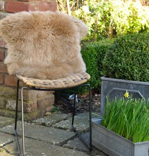Silky Sheepskin Dark Beige XL